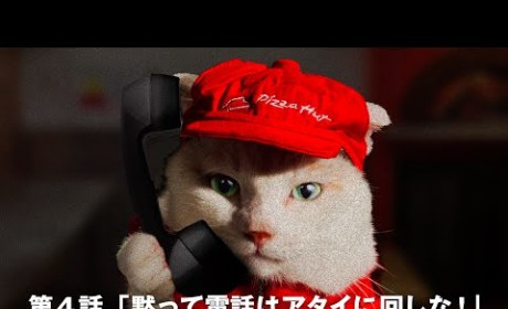 Pizza Hut Cat Fails to Answer Phone