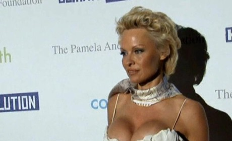 Pamela Anderson Dismisses Divorce Filing