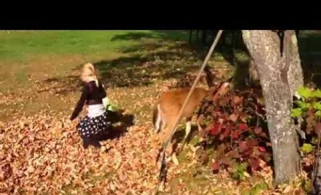 Little Girls Play with Fawn