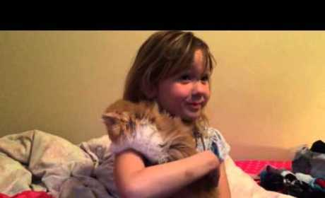 Little Girl Receives Kitten for Birthday, Reacts in Purr-fectly Adorable Fashion