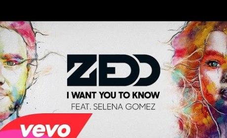 """Zedd and Selena Gomez - """"I Want You to Know"""""""