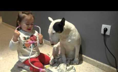 Little Girl Gives Patient Dog a Check-Up