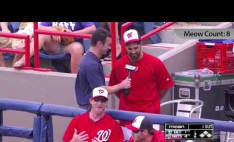 Gio Gonzalez Gives Super (Troopers) Spring Training Interview: Watch MEOW!