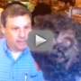 Anthony-weiner-explodes-at-jewish-voter