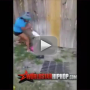 Sharkeisha-fight-video-heard-round-the-world