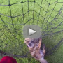 Man-rescues-baby-fox-from-net