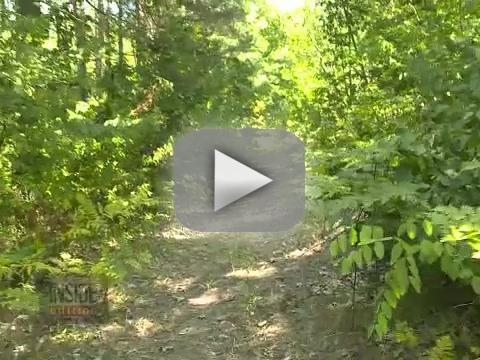 Abby Wetherell, 12, Attacked By Bear, Plays Dead, Lives to Tell About