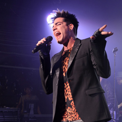 Adam Lambert Concert Pic