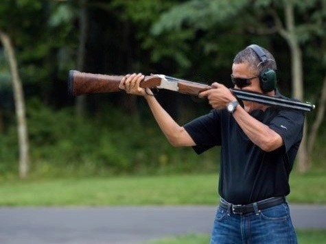 Obama Gun Photo Parody