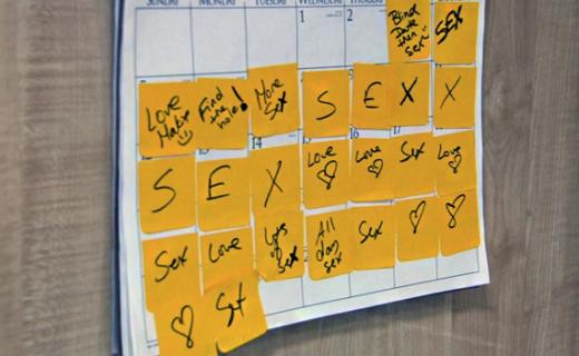 Joanna Krupa's Calendar