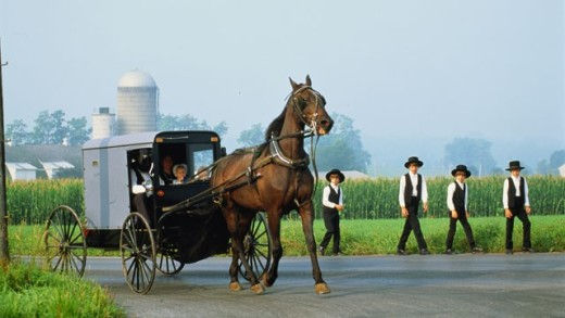 Amish folks