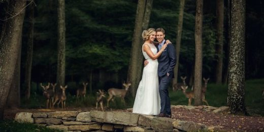 Deer Photobomb Wedding Picture