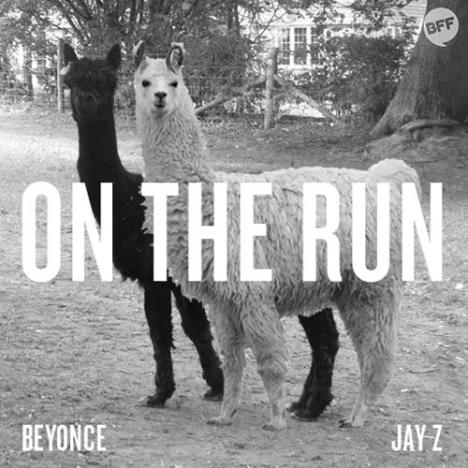 Llamas: Jay Z and Beyonce