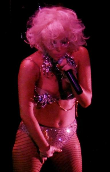 Lady Gaga Crotch Picture