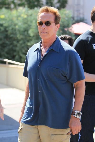 Schwarzenegger Pic