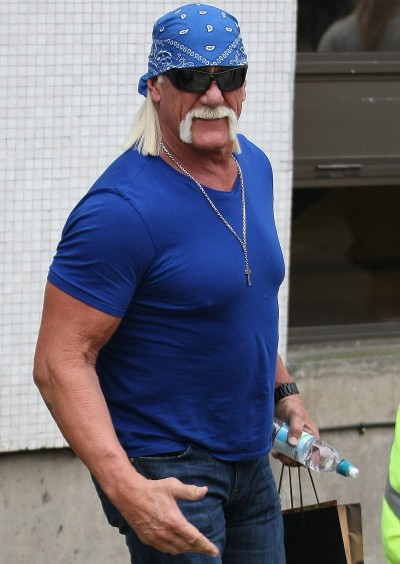 THE Hulk Hogan