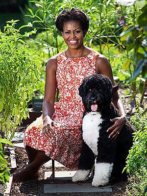Michelle Obama and Bo Photo