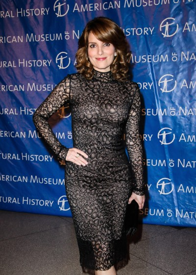 Tina Fey Red Carpet Pic