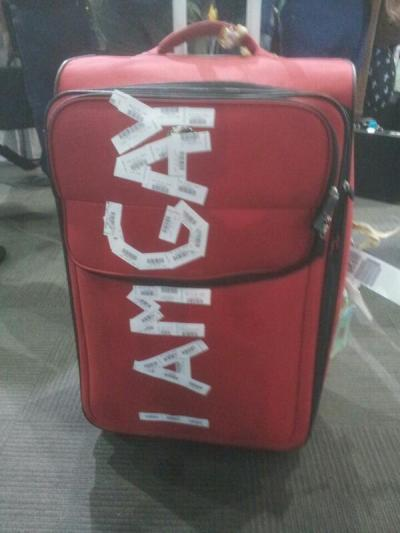 I Am Gay Luggage Insult